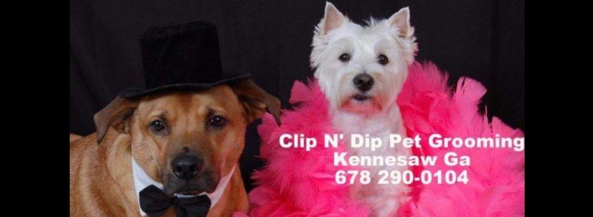 Clip N Dip