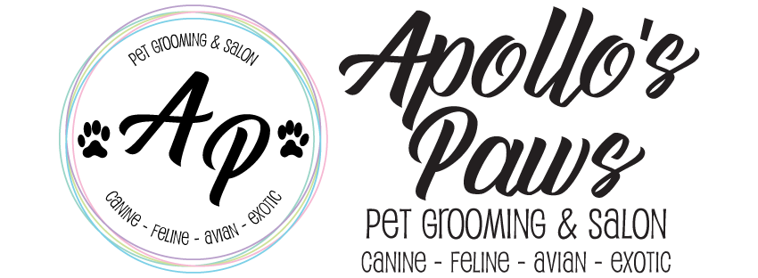 Apollo's Paws, LLC
