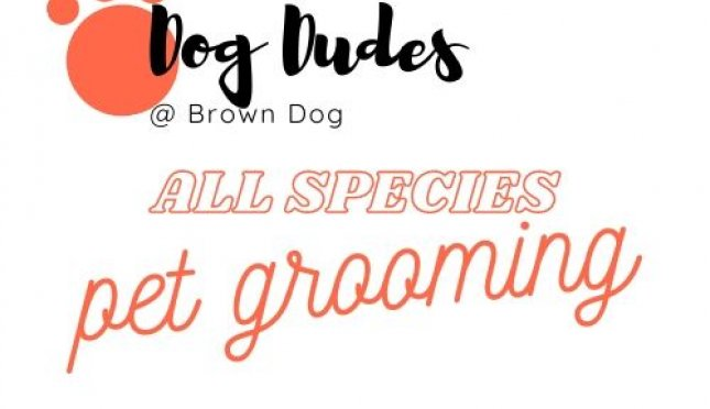 Dog Dudes @ Brown Dog