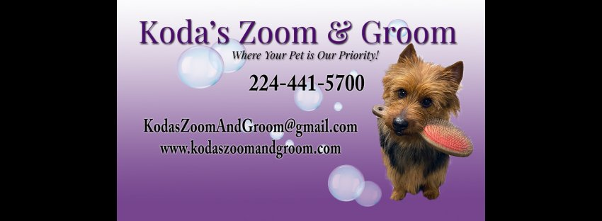 Koda's Zoom & Groom