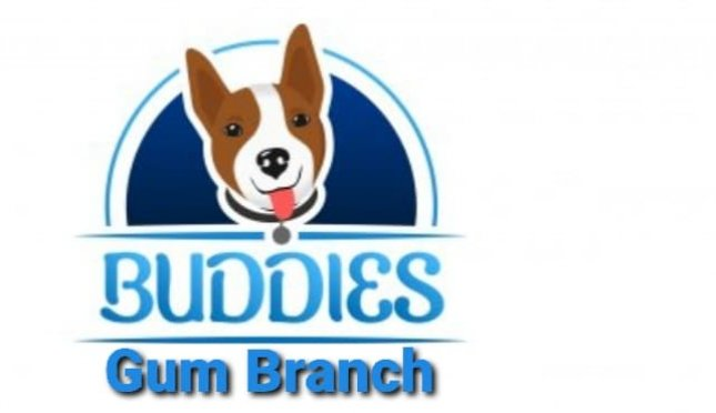 Buddies Country Kennels
