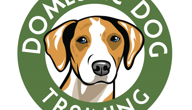 Domestic Dog Training