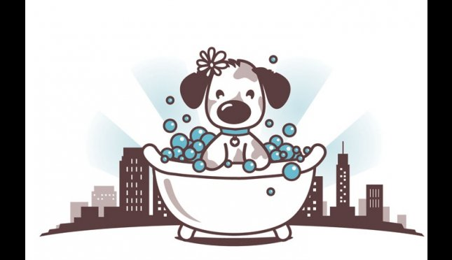 Bark Avenue Dogwash, LLC