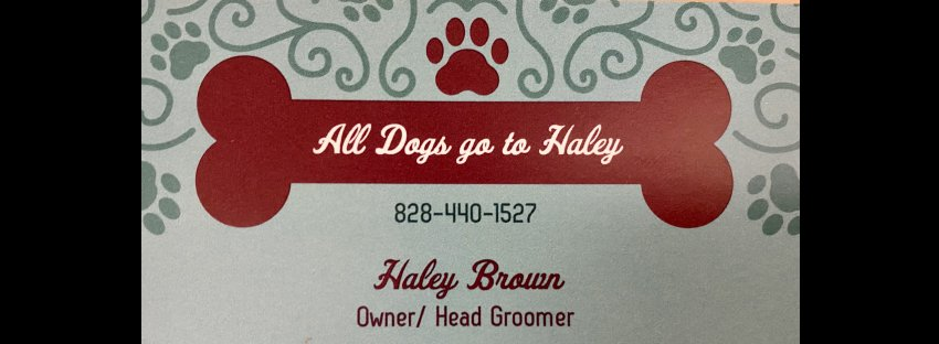 All Dogs go to Haley LLC