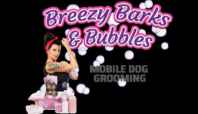 Breezy BNB LLC